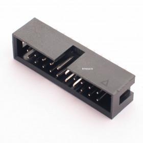 Conector Header 20 vias 180º